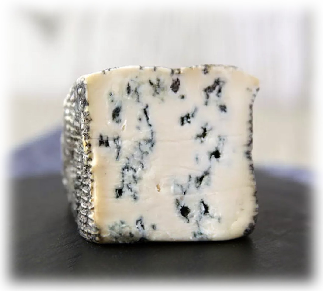 Blue de Chèvre