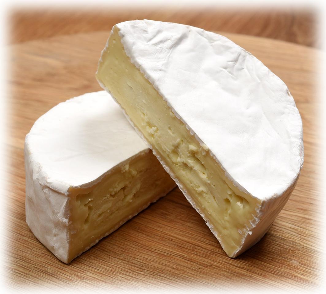 Cornish Camembert