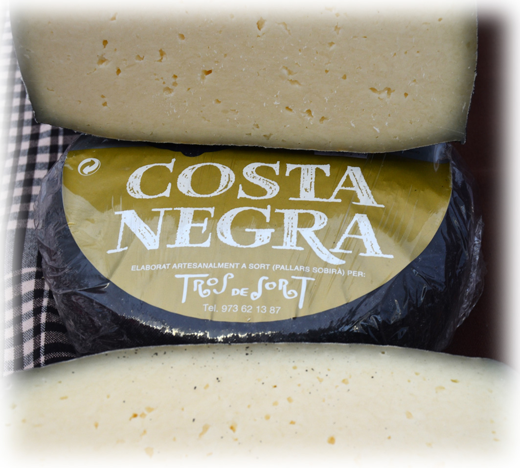 Costa Negra