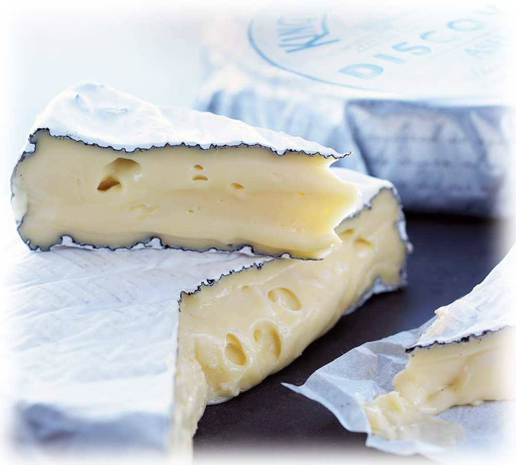 Discovery Ash Brie