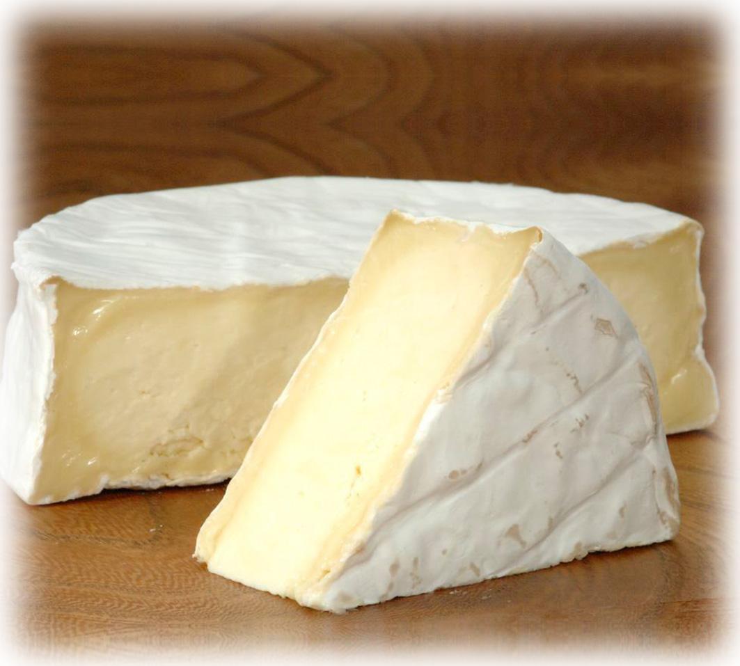 St. Endellion Brie