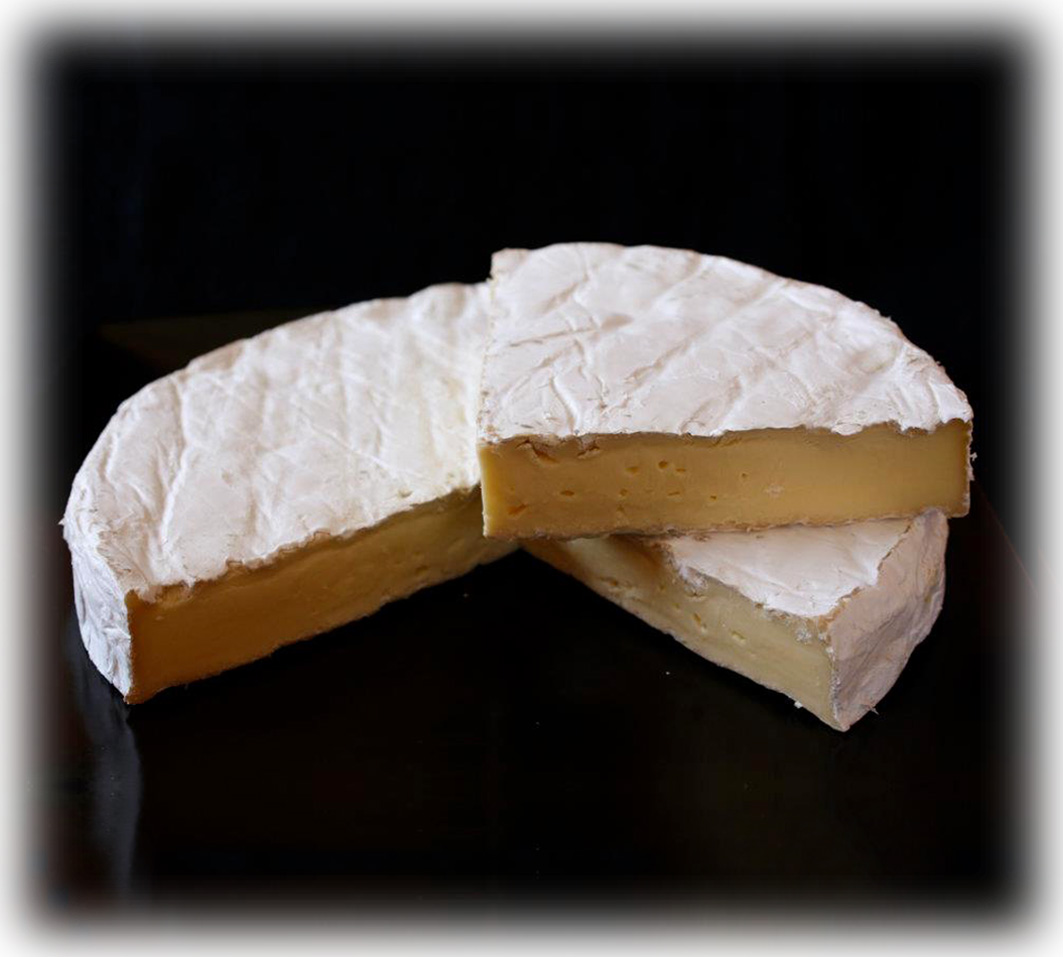 Waimata Camembert